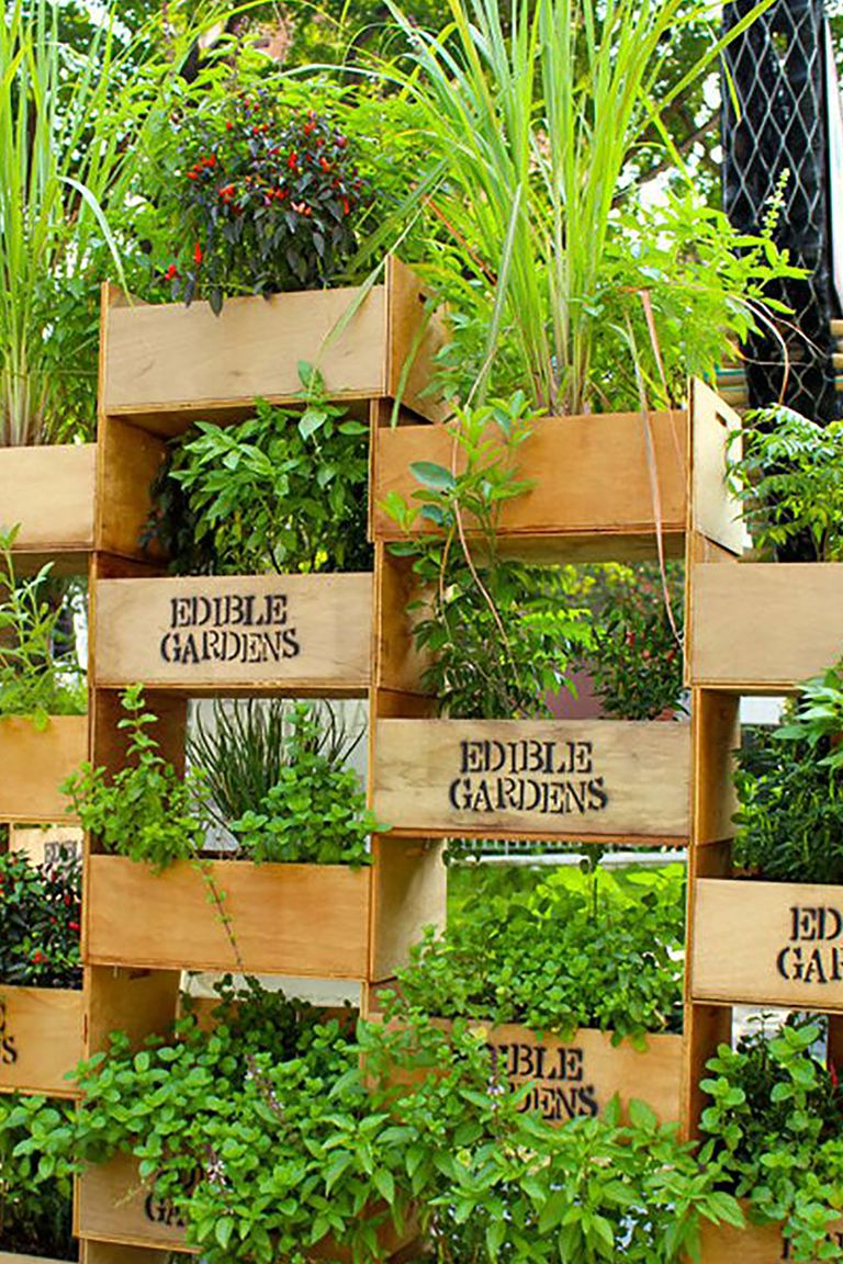 26 Creative Ways to Plant a Vertical Garden - How To Make ...