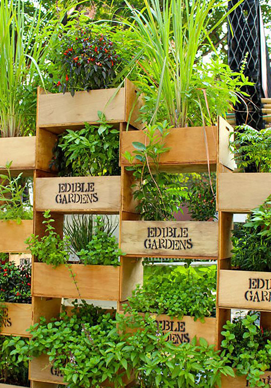 Beau Stacked Crate Vertical Garden