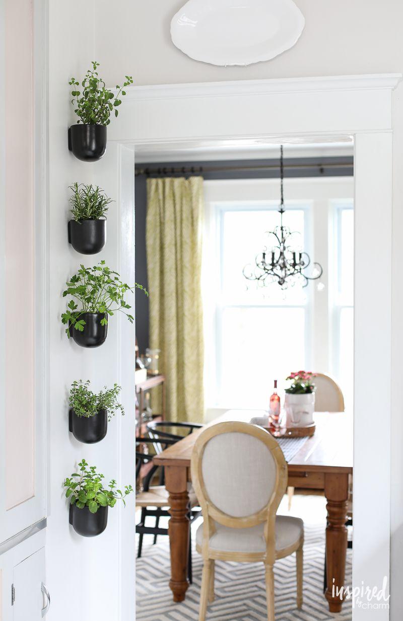 vertical garden herb