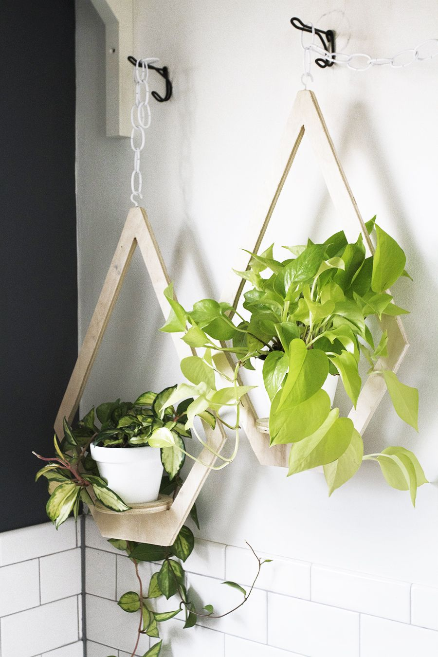 vertical garden plywood