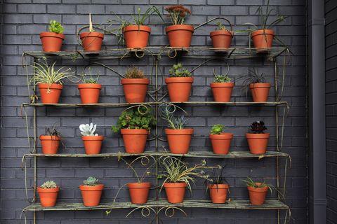 Vertical gardening - plant pots - Argos garden trends 2018