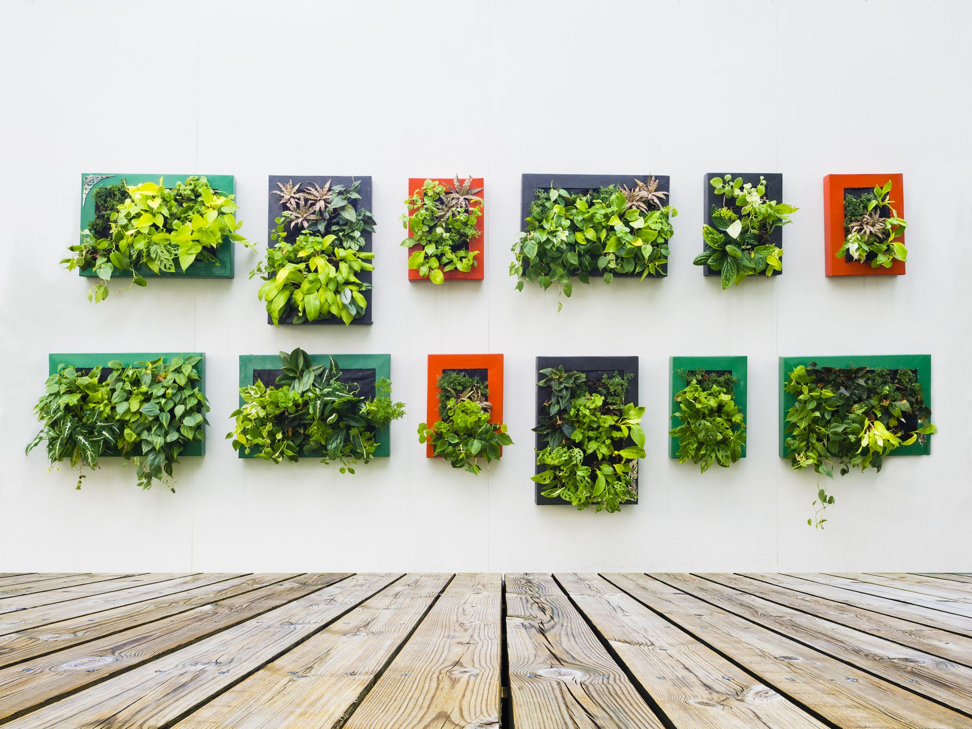 35 Creative Ways to Plant a Vertical Garden - How to Make a ...