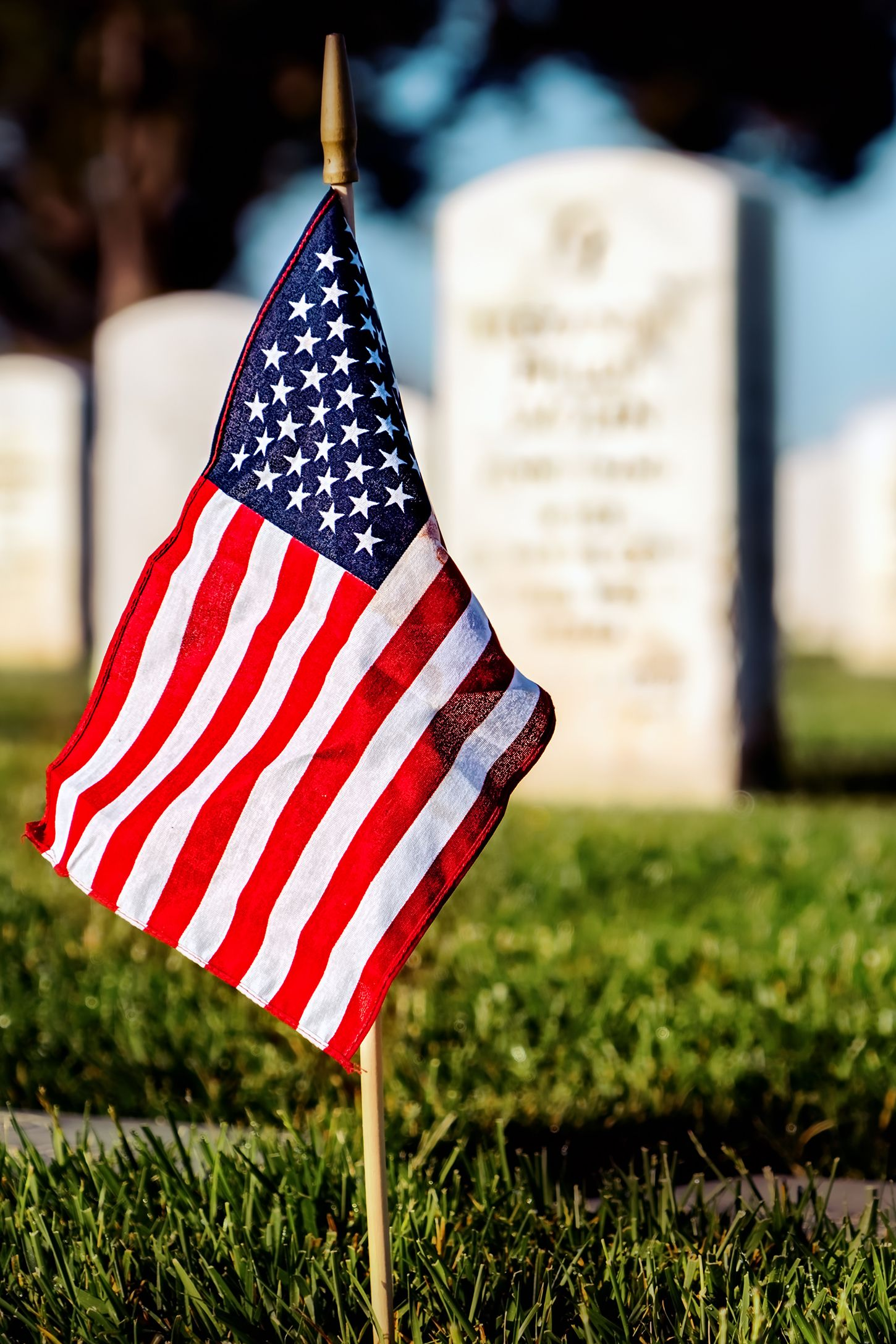 25 Patriotic Veterans Day Quotes to Say Thank You to Our ...