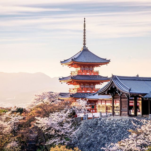 Sky, Chinese architecture, Pagoda, Japanese architecture, Landmark, Architecture, Flower, Temple, Tree, Morning,