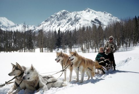 best winter vacations aspen dogsledding veranda