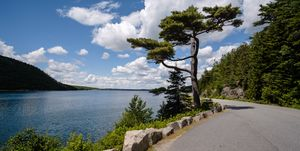 View from Acadia National Park - Somes Sound