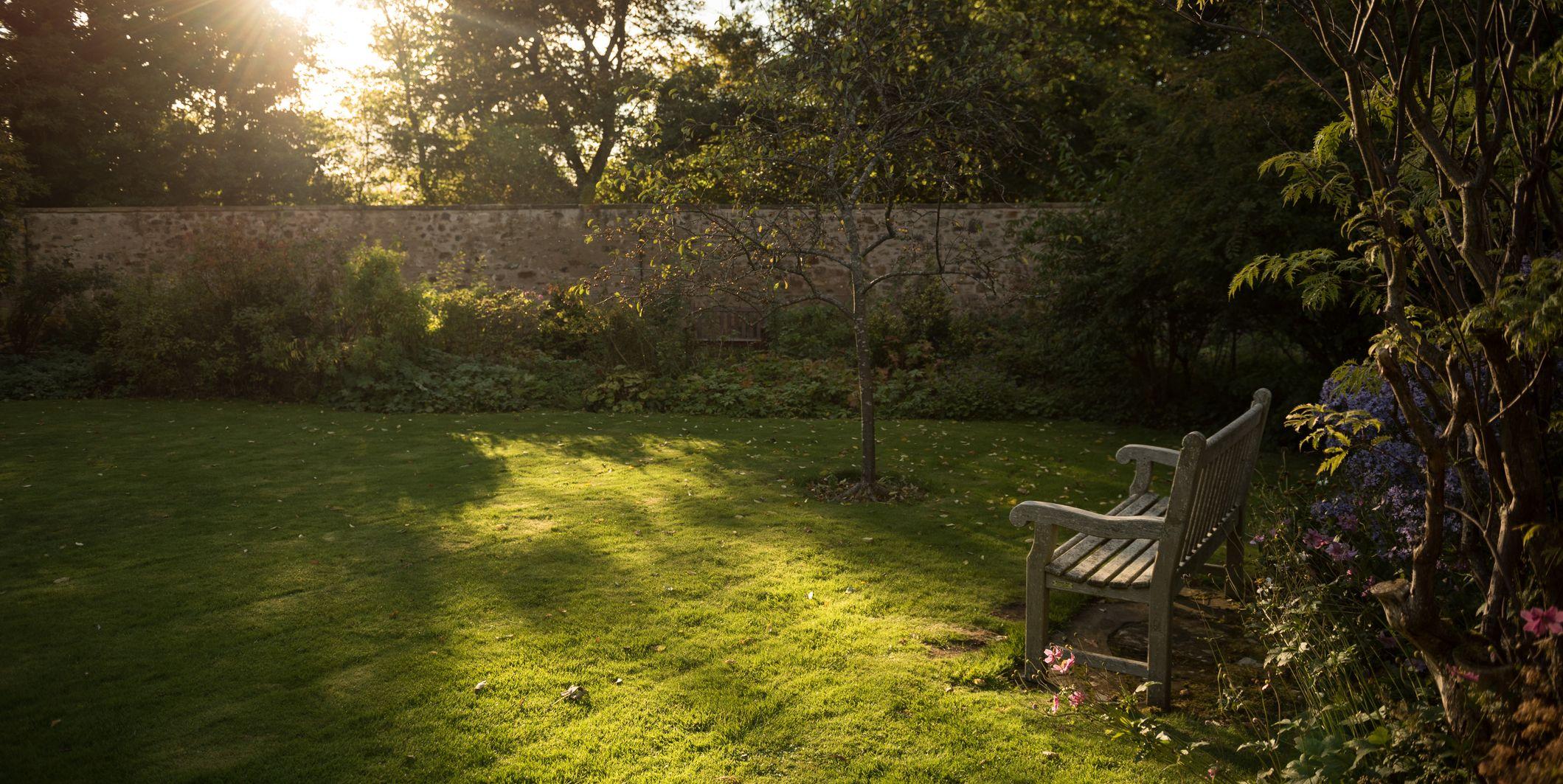 backyard diy ideas