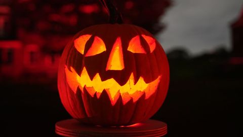 Rise of the Jack O'Lanterns in New York