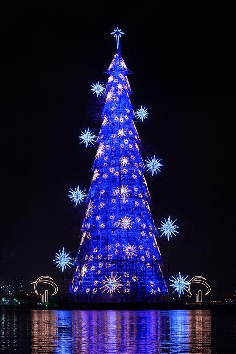Brazil Christmas.40 Best Christmas Trees Ever White House Rockefeller
