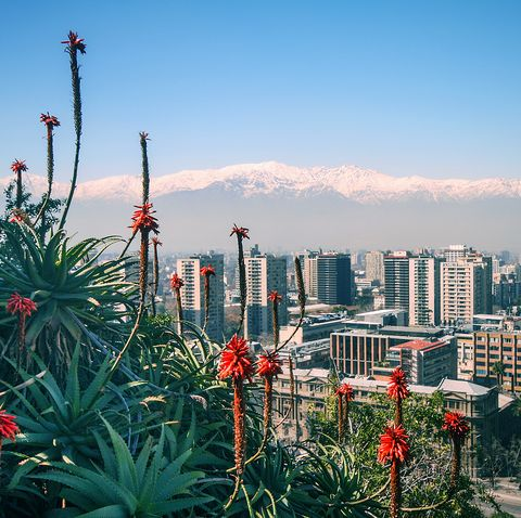 View of the Andes, plants and city from Santa Lucia Hill, Santiago, Chile