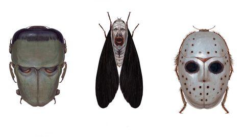 insectos terror cine