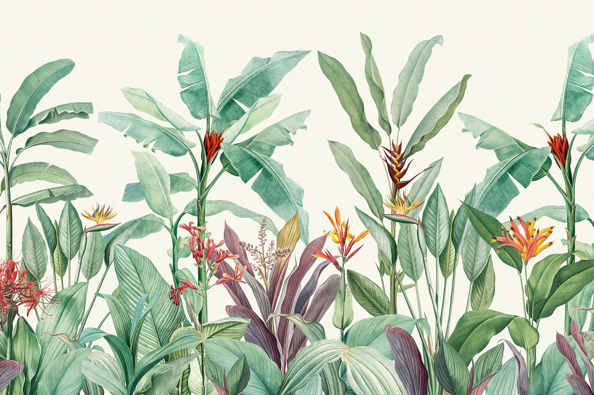 These beautiful wall murals are inspired by the botanical illustrations of Pierre-Joseph Redouté
