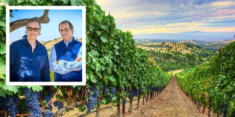 wine makers Daou brothers
