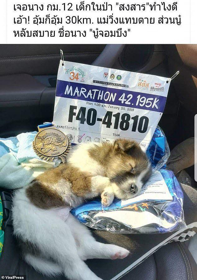 [Image: viral-press-marathon-puppy-1548773943.jp...size=320:*]