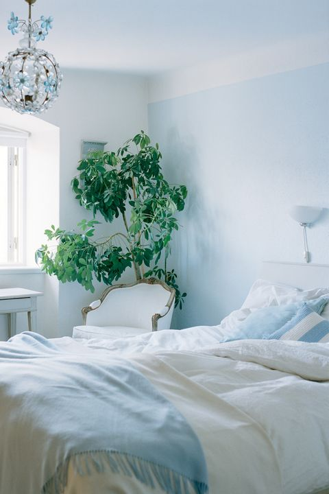 The Best Room Colors For Your Zodiac Sign