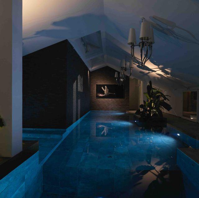Majorelle blue, Swimming pool, Houseplant, Yard, Courtyard, Backyard, Water feature,