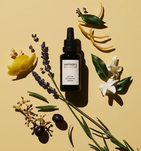 Product, Botany, Plant, Flower, Still life, Cosmetics, Still life photography,