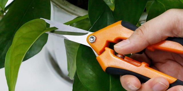 vivosun gardening pruning shears
