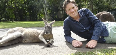 Vertebrate, Mammal, kangaroo, Kangaroo, Macropodidae, Wallaby, Marsupial, Wildlife, Grass, Burro,