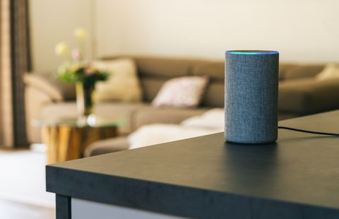 voice controlled speaker and personal Assistent at home