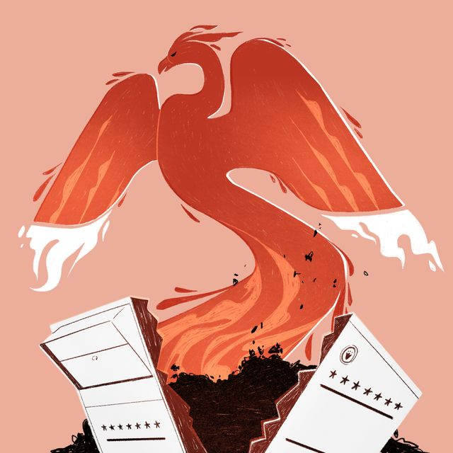illustration of a red phoenix with blazing wings emerges from ashes and a cracked ballot box background is a pale pink