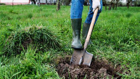 diepte-eigenaar-grond-tuin