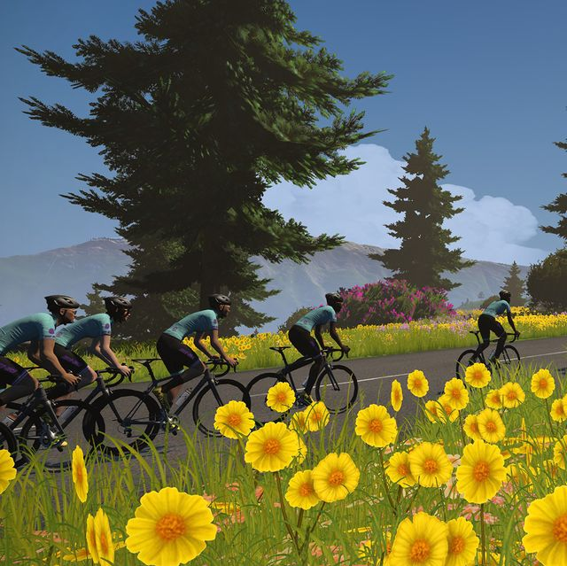 screenshot of cyclists riding by a field of flowers in zwift's tour de france