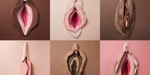 Cult Beauty Vulvalution