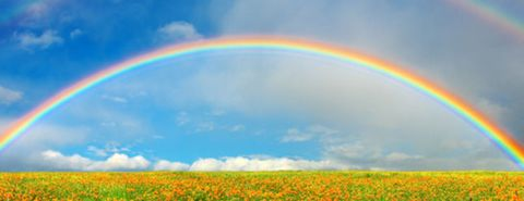regenboog-boogvormig