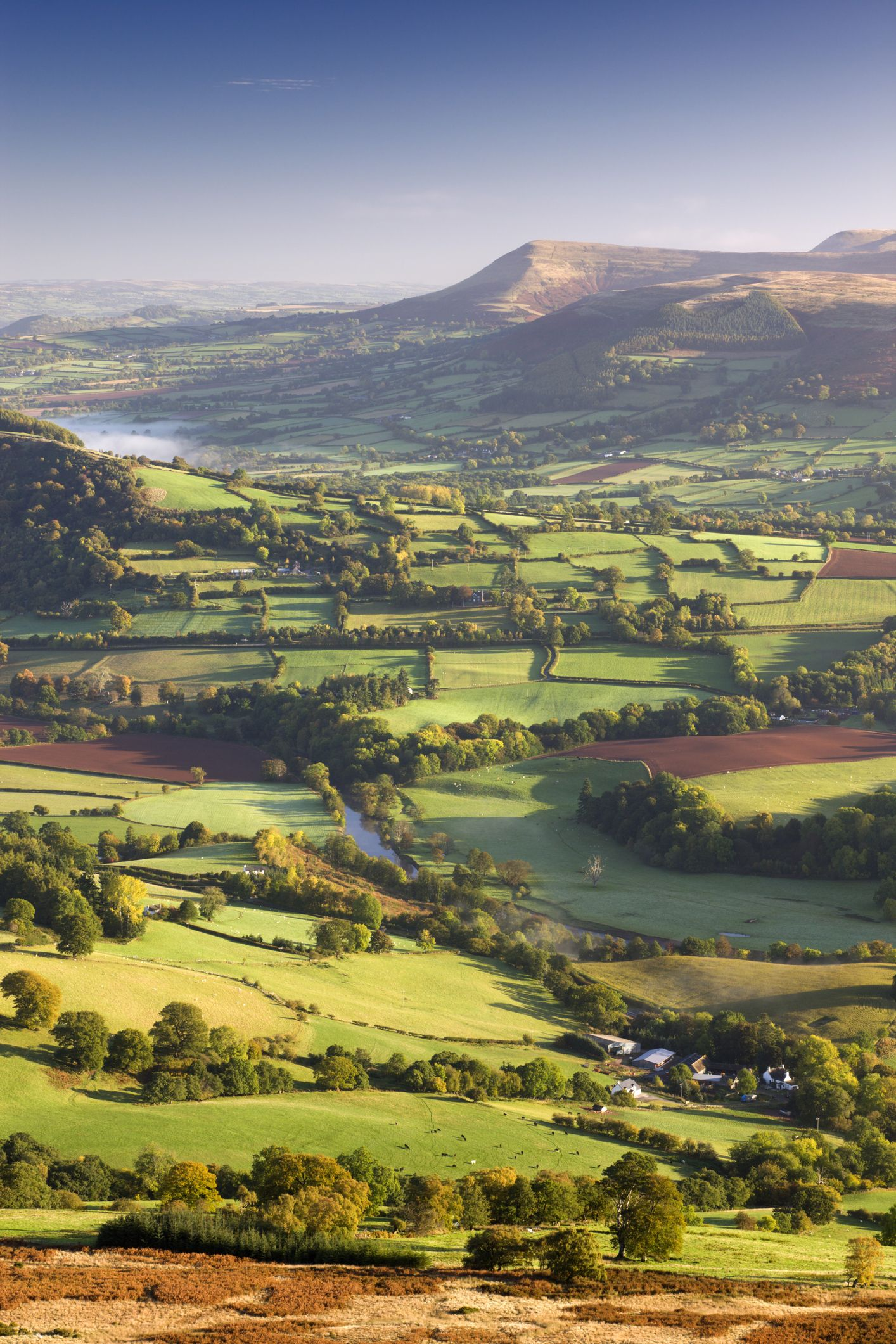 Beautiful scenic dog walking routes in the UK