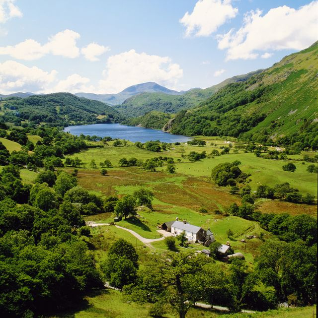 brits appreciate the countryside more than ever, says new study