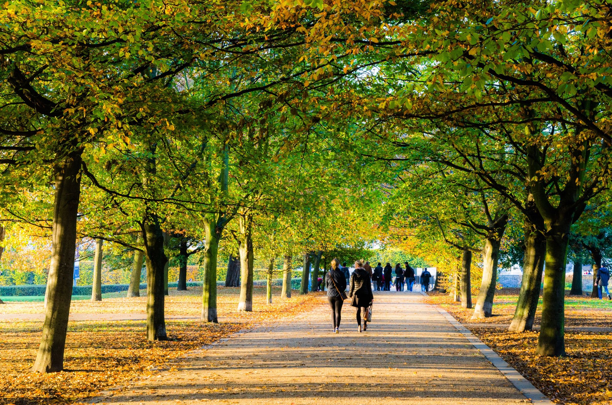 Spending 20 minutes in a park each day can officially make you happier