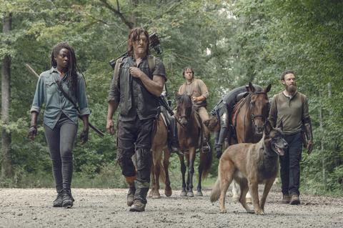 The Walking Dead _ Stagione 9, Episodio 9 - Danai Gurira nei panni di Michonne, Norman Reedus nel ruolo di Daryl Dixon, Ross Marquand nel ruolo di Aaron, Josh McDermitt nei panni del Dr. Eugene Porter