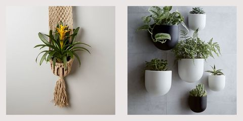 best wall planters