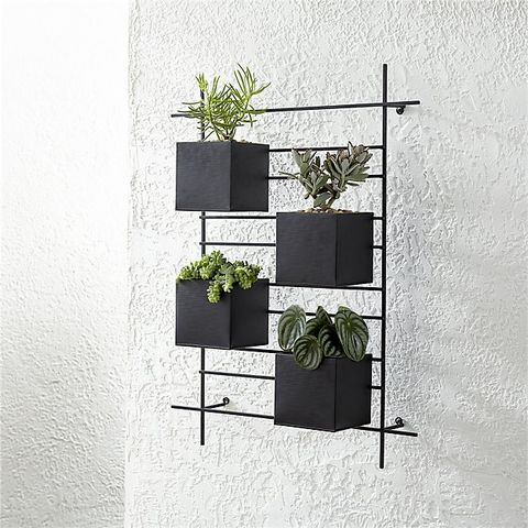 The Best Wall Planters For Outdoor And Indoor House Plants