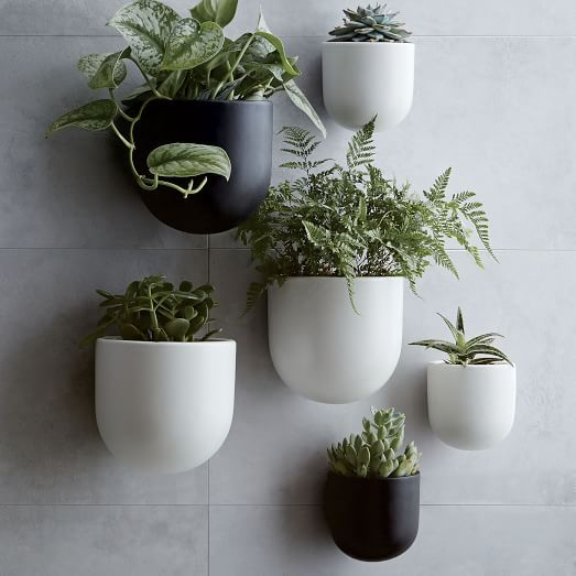 The Best Wall Planters For Outdoor And Indoor House Plants Planter Bo
