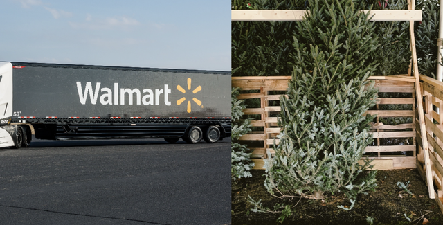 walmart introduces christmas tree delivery service