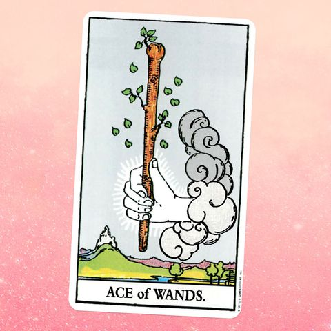 the tarot card the ace of wands, showing a white hand coming out of a cloud, holding a  giant wooden wand