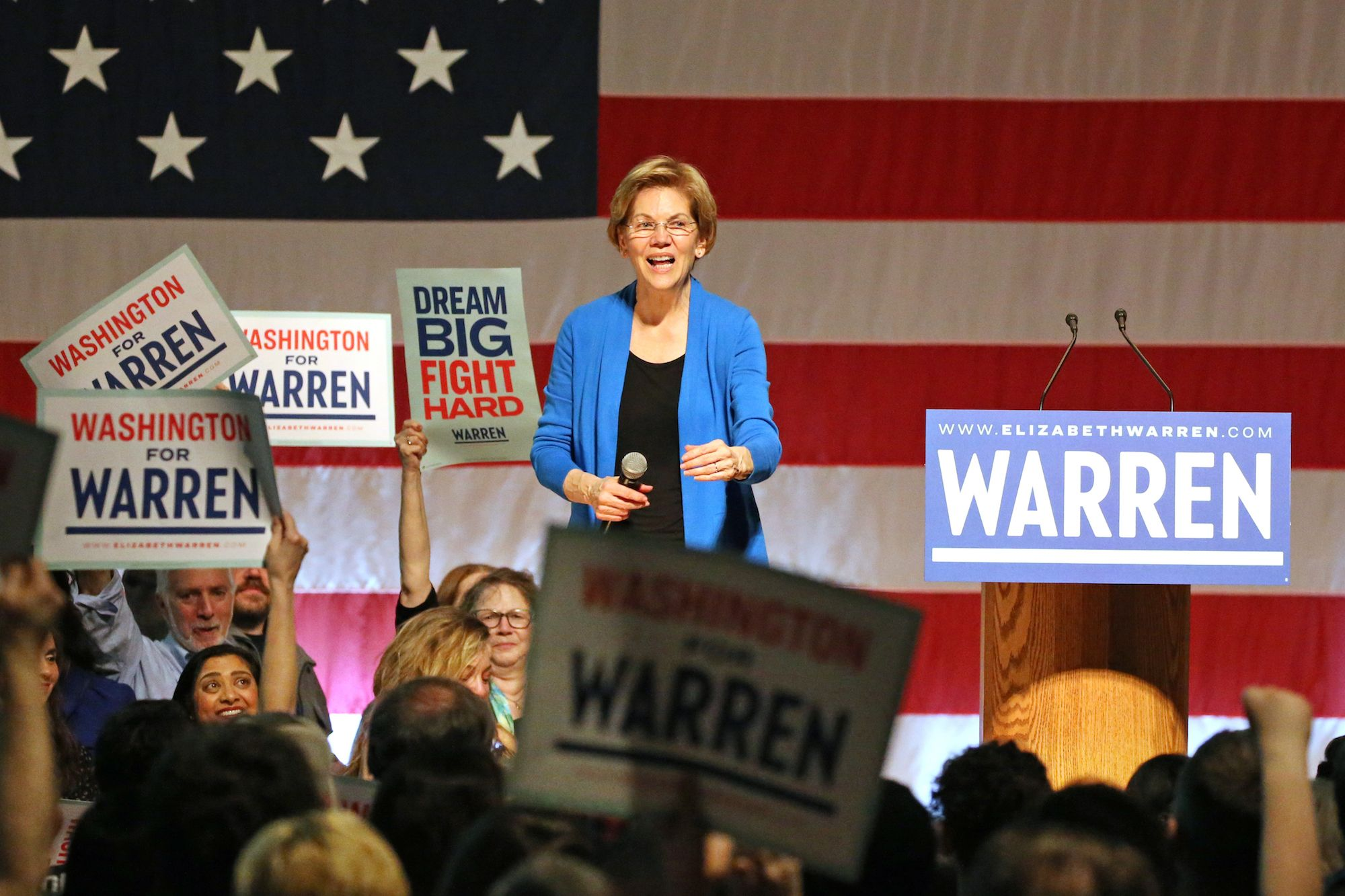 I Went Over to City Hall This Afternoon and Voted for Elizabeth Warren for President