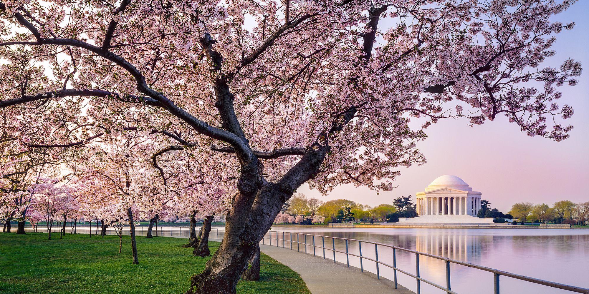 East Potomac Park, Washington, D.C.