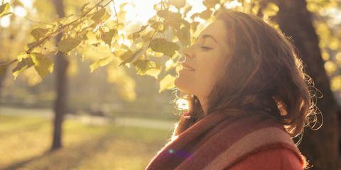 Wat-is-mindfulness-hersenen-voordelen