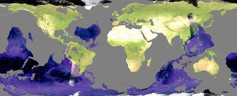 wereldkaart-antipoden