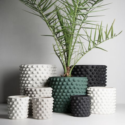 white black and green planters with bumps on them