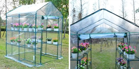 Greenhouse, Canopy, Outdoor structure, Yard, Shade, Garden,
