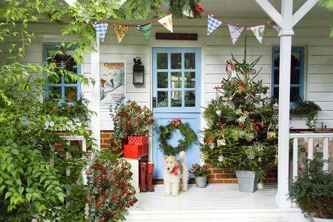 Ways Decorate Christmas Tree Dog