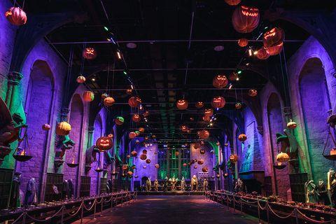 Harry Potter Studio Tour After Dark Dinner