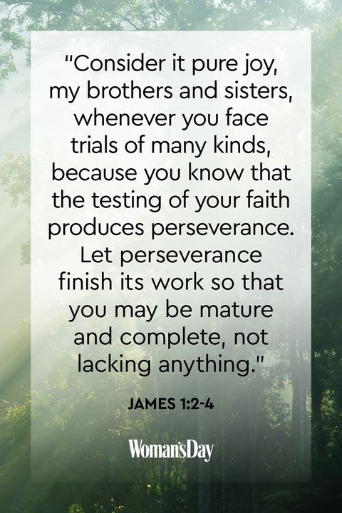 40 Bible Quotes - Bible Scripture Verses of the Day