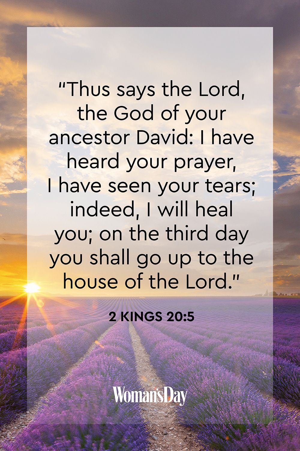 Receive the Daily Bible Verse: