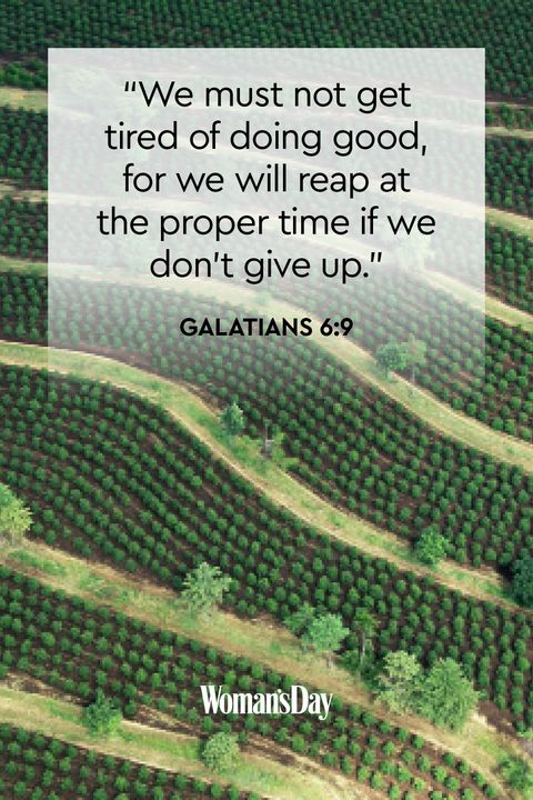 palm sunday scriptures