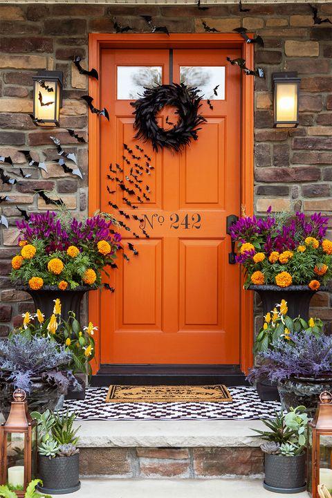 halloween diy decor ideas  batty front door